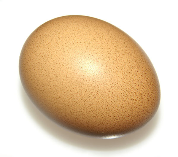 Our thousandth egg