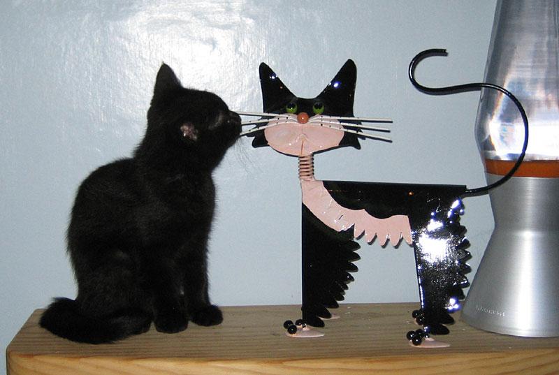 Twiglet with Fat Face Felix